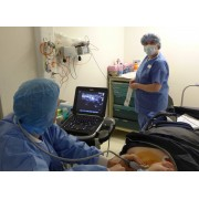 Réalisation de l'anesthésie loco-régionale echo-guidée